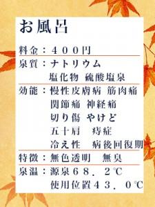 sinnseikann11-1