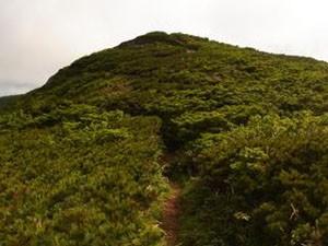 高下岳頂上1